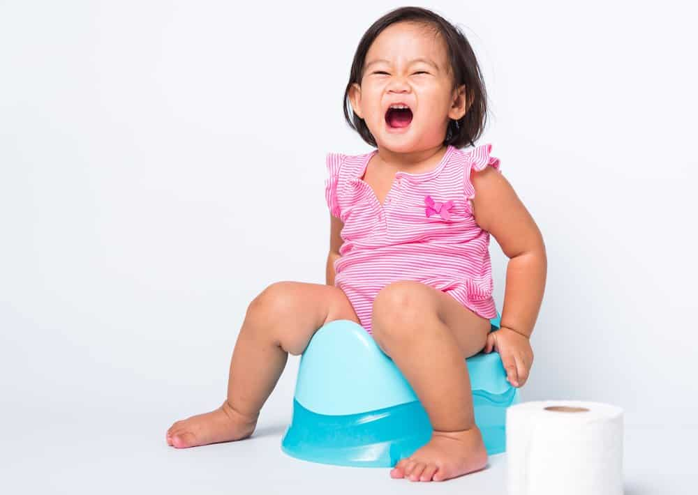 Successful potty training tips