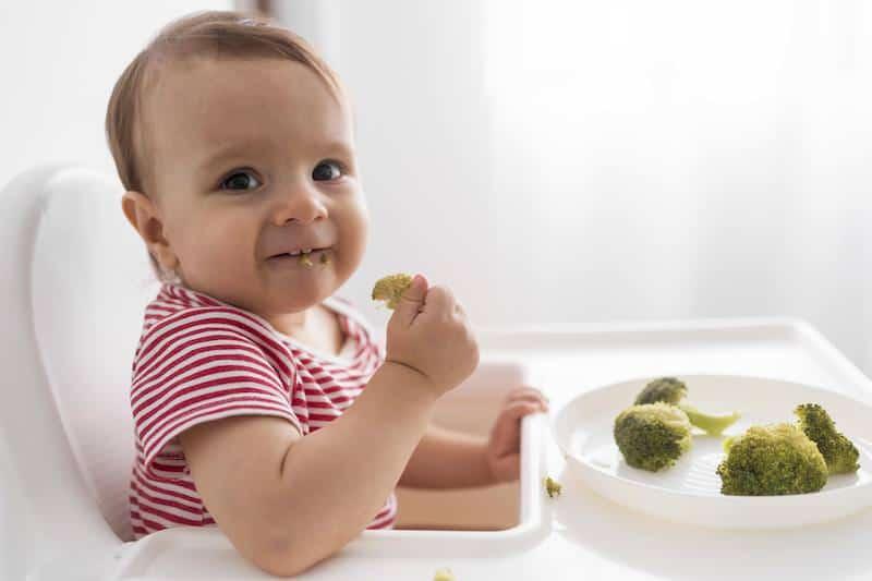 When should babies start solids