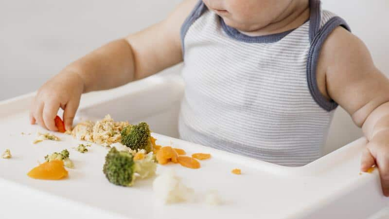 Baby finger food safety tips