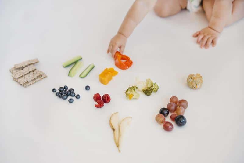 Best finger foods for babies