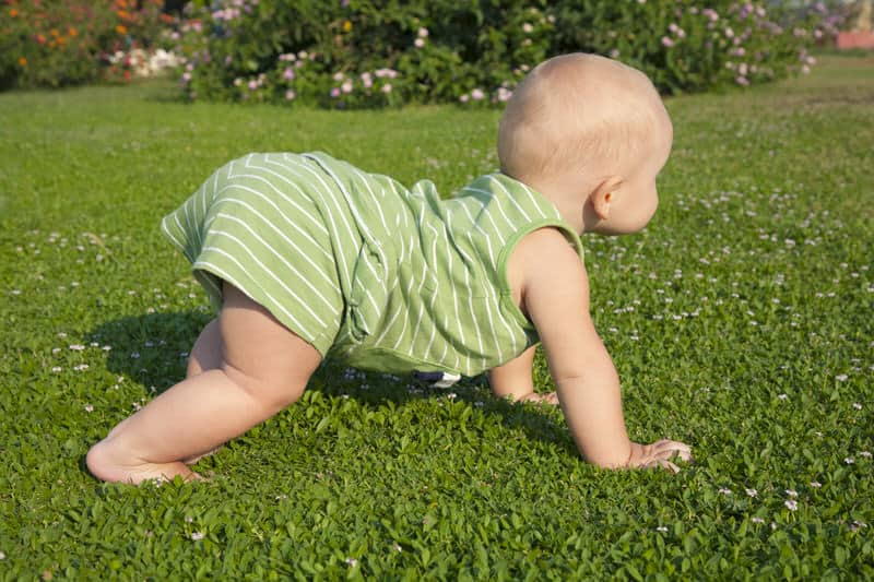 Different ways your baby might crawl