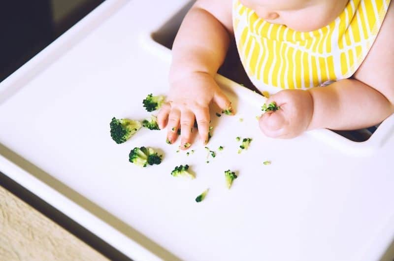 When can I introduce finger foods to my baby?