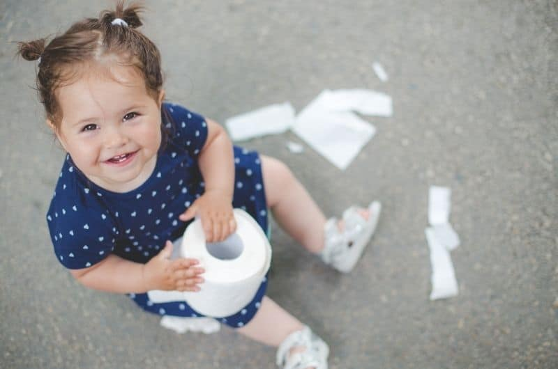 Why Does My Baby Always Eat Paper?