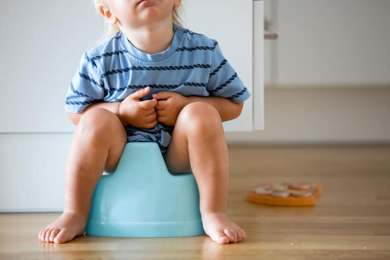 Can Drinking Too Much Milk Cause My Toddler To Have White Poop?
